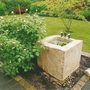 Raben-Cassa im Garten